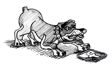 Hund, Bitfrost Grafik